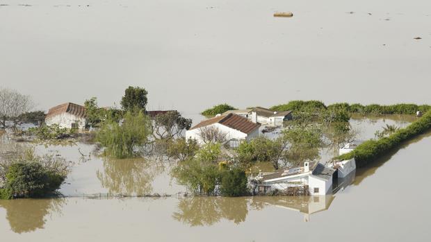 Las aguas desbordadas del Ebro han anegado unas 20.000 hectáreas a su paso por Aragón