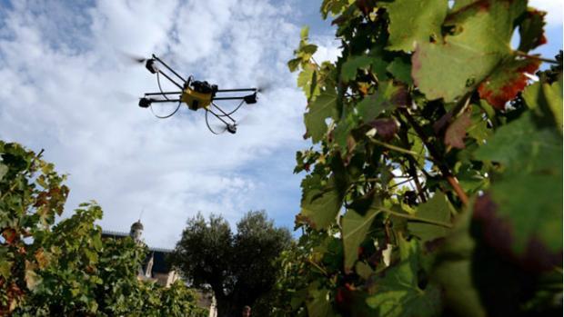Un dron sobrevolando los viñedos