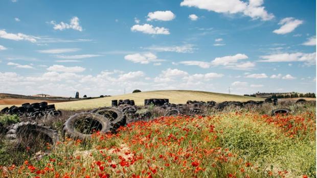 Imagen del vertedero de Cervera Llano, que acumula 80 toneladas de ruedas