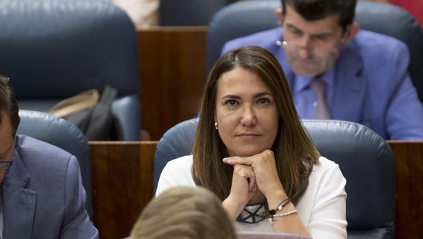 Isabel González, diputada del PP y hermana del expresidente Ignacio González