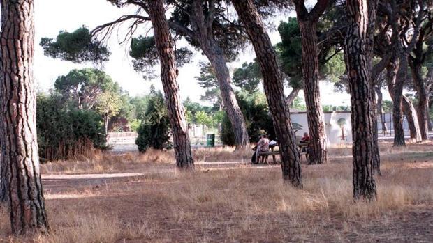 Pinar de Antequera de Valladolid