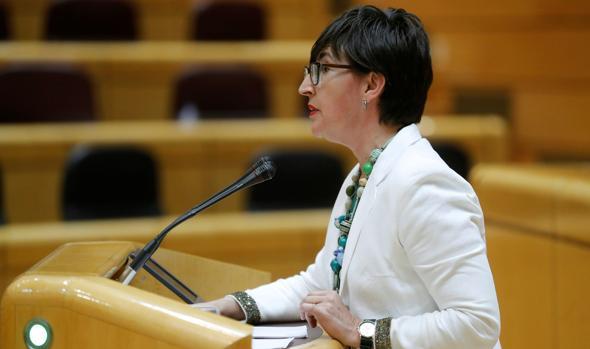 La senadora del PNV María Dolores Etxano