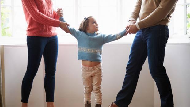 Padres sin custodia podrán pedir, sin permiso del otro progenitor, título de familia numerosa para incluir hijos comunes