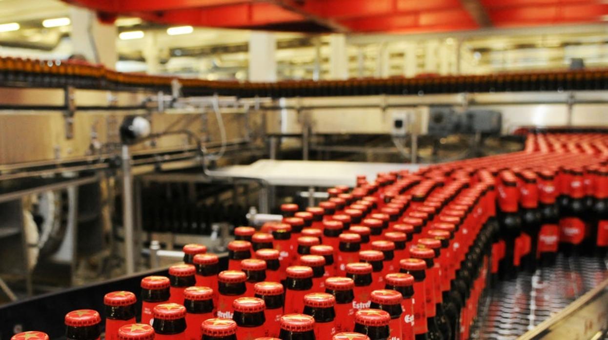 La cervecera Damm ve crecer sus beneficios un 11%, hasta los 112 millones de euros