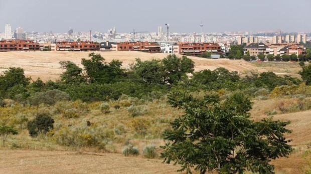 Paraje de Retamares y zona militar, donde se pretende ampliar una vía verde hacia Madrid. Boardilla del Monte