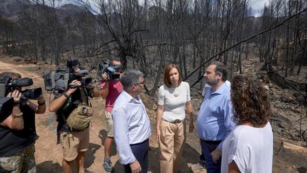 La alcaldesa de Gandia, Diana Moran, entre el delegado del Gobierno en la Comunidad Valenciana y el ministro Ábalos, visitando una zona incendiada