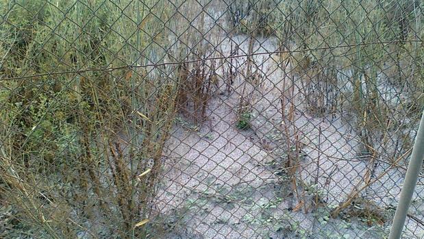 Imagen difundida por la Policía de la Generalitat