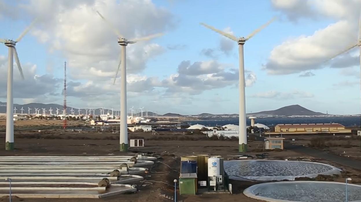 Gran Canaria coloca la tecnología española del agua a Corea del Sur