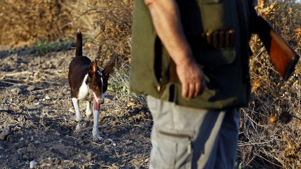 Muere un menor de 13 años tras recibir un disparo en la cabeza en una partida de caza en Valladolid