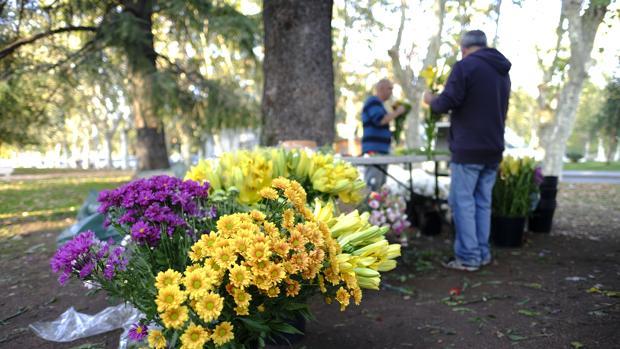 Venta de flores para el Día de Difuntos