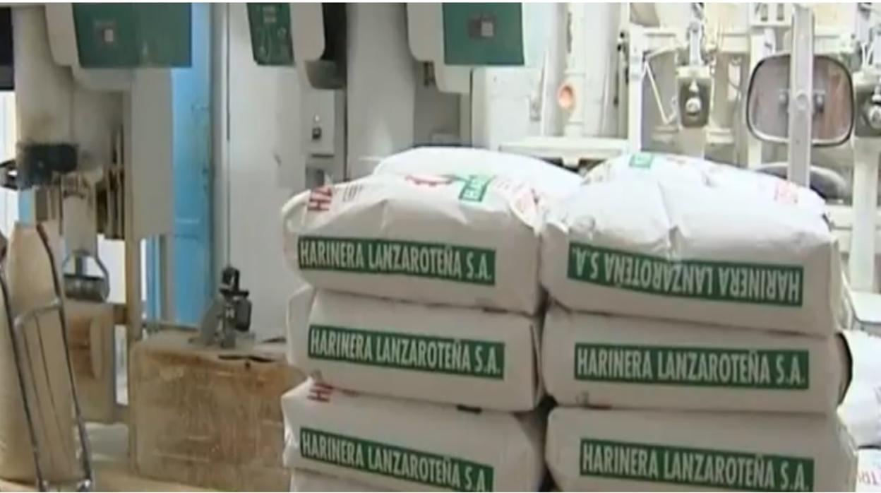 Vídeo: cómo las ayudas europeas pueden matar a una empresa canaria de una isla no capitalina