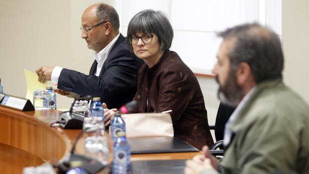 Los diputados socialistas Abel Losada y Patricia Vilán, en la comisión de investigación de O Marisquiño