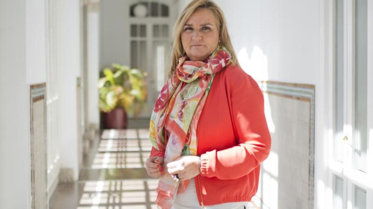 La Comunidad de Madrid exige a Sabanés los informes técnicos de Madrid Central