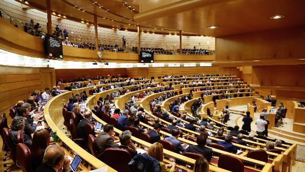 Siga en directo la sesión de control al Gobierno en el Senado