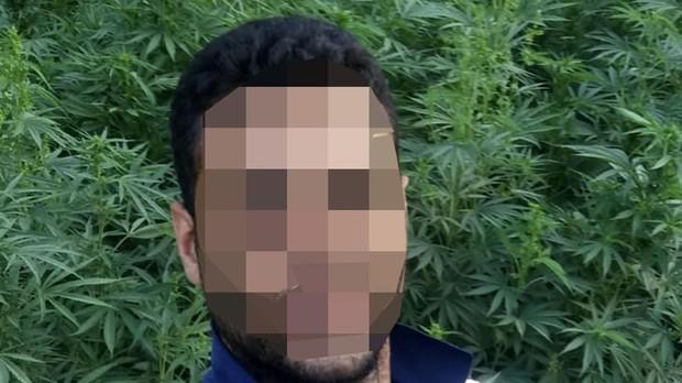 Un productor de hachís se hace un «selfie» en su plantación