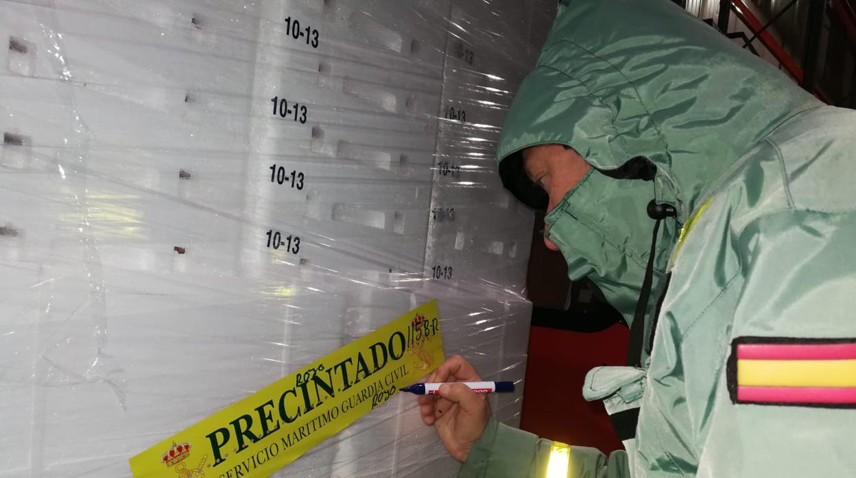 Precintan en La Coruña 153 toneladas de cigala irregular con un valor próximo a 4,5 millones
