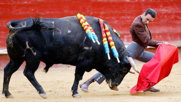 El diestro Enrique Ponce da un pase a su astado en el festival taurino celebradoen octubre en Valencia