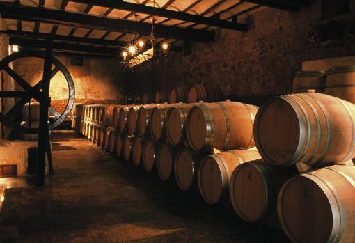 Imagen del interior de las bodegas Chozas Carrascal
