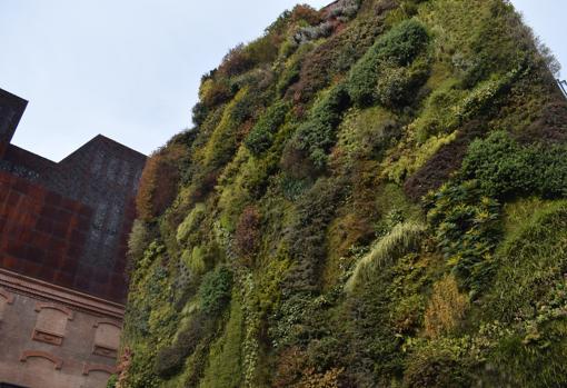 Jardín vertical instalado en una fachada vista con una superfiicie de 460 metros cuadrados