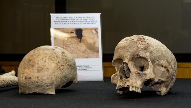 Los esqueletos de Atocha proceden de una carga de caballería