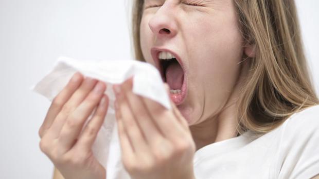 El año pasado, la epidemia de gripe se prolongó en Aragón durante casi tres meses