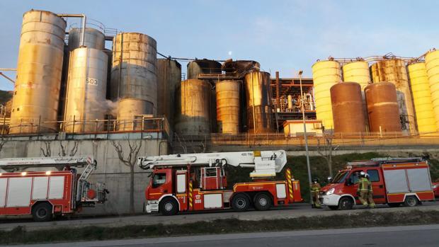 Hasta el lugar acudieron varias dotaciones de bomberos