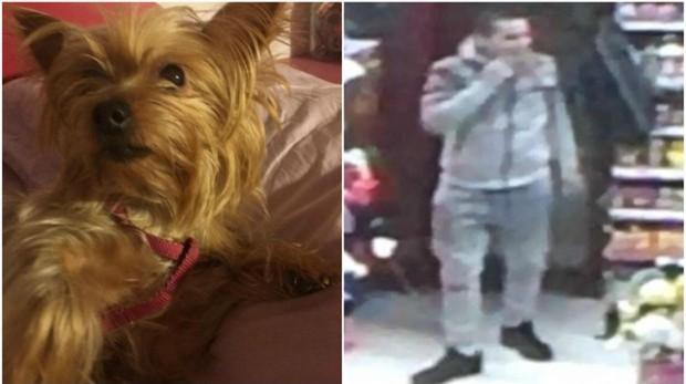 Perro robado y, a la derecha, el presunto ladrón en la tienda de alimentación