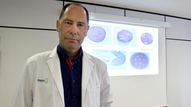 Ángel Moral, responsable de la Unidad de Aerobiología del Servicio de Alergia del Complejo Hospitalario de Toledo