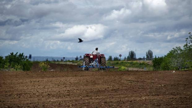 Una de las actividades donde más dinero se ha invertido es en agricultura