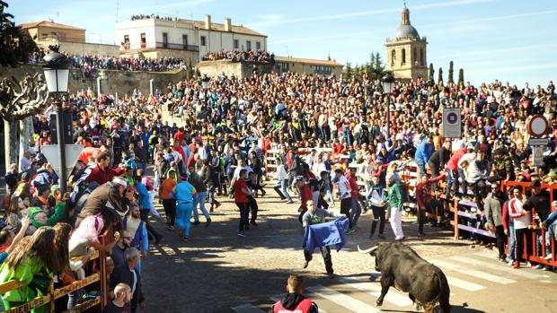 Spot del Carnaval del Toro 12222