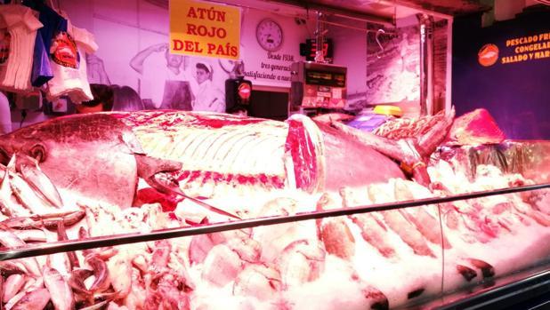 Atún rojo de 300 kilos en el Mercado de Vegueta