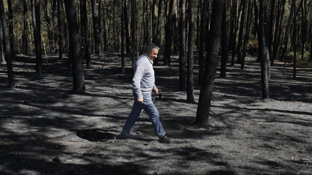 Un vecino de Rianxo recorre una de las zonas afectadas por el fuego