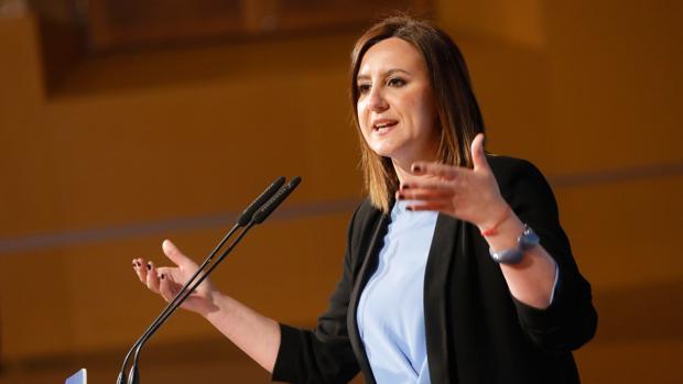 Catalá ficha al presidente de Lo Rat Penat y al de la Federación de Fallas de Especial para la lista del PP de Valencia