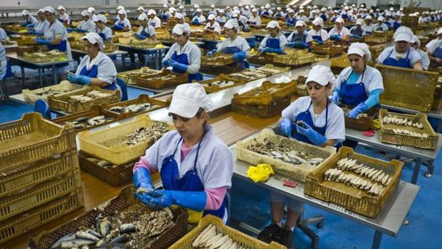 Mujeres trabajando en una conservera