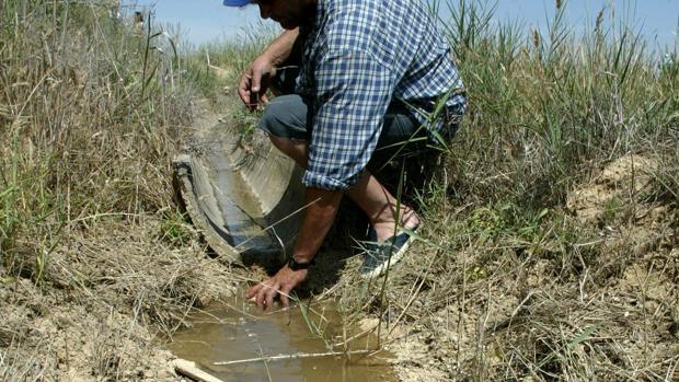 En el conjunto de la cuenca del Ebro, las reservas de agua son un 8,3% menores que hace un año