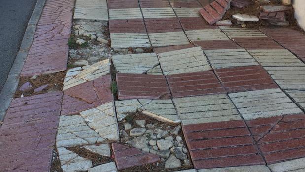 Una de las aceras sin mantenimiento ni renovación en una zona residencial de la costa en El Campello