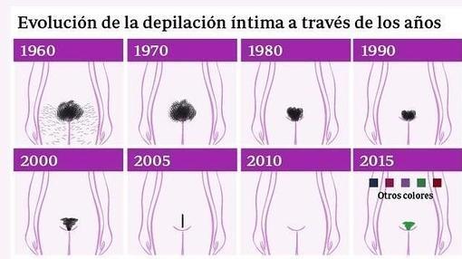 Ejemplos de estilos de cera bikini