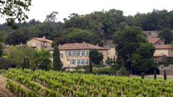 Además de a magnífica casa de 35 habitaciones, adquirieron unos viñedos con los que producen un rosado de cierto éxito.