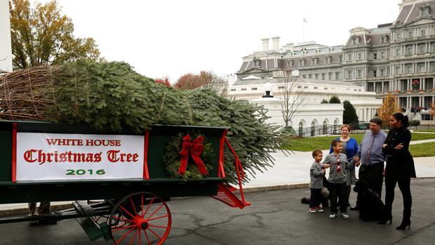 michelle obama recibe junto a sus sobrinos el rbol de navidad para la casa blanca