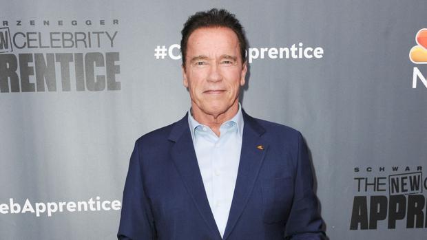 Arnold Schwarzenegger: «Cuando me miro en el espejo, me