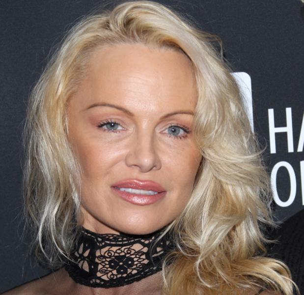 Pamela Anderson Porn Videos  Pornhubcom