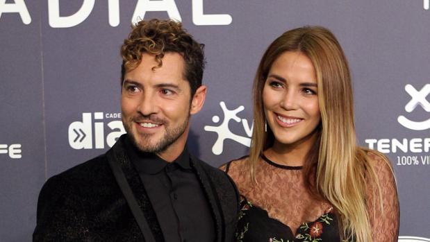 David Bisbal y Rosanna Zanetti se hacen pareja de hecho por sorpresa