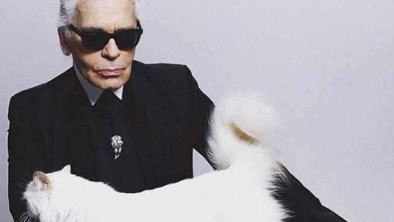 El desorbitado sueldo de Choupette, la gata estrella de Karl Lagerfeld