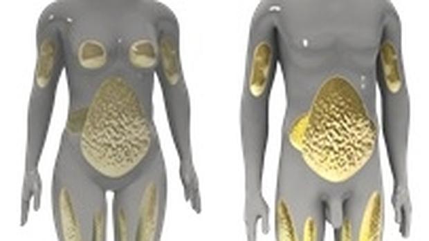 8 cosas que desconocías sobre la grasa abdominal