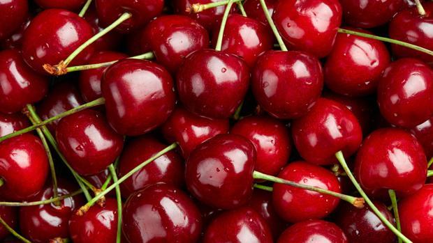 acido urico alto o que significa el oregano es malo para el acido urico licuados de frutas para bajar el acido urico
