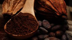 El cacao, un alimento que mejora el rendimiento de los niños