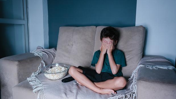 «Los niños menores de doce años no deberían ver en la televisión imágenes de atentados»