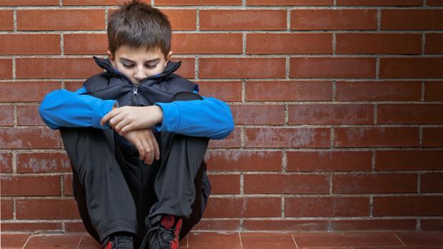 «Los niños con Síndrome de Asperger tienen capacidades intelectuales normales»