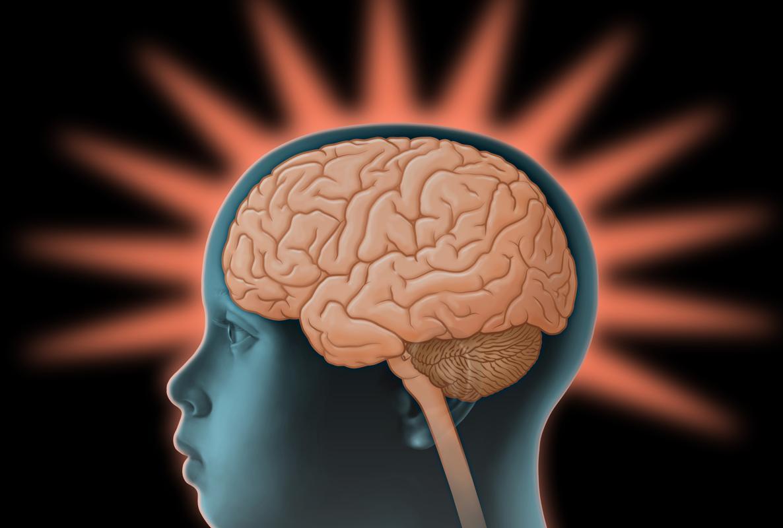 El aceite de pescado cuida tu cerebro