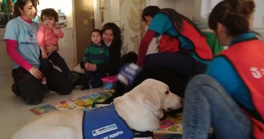 Perros como medicina... niños felices - Turismo rural petfriendly